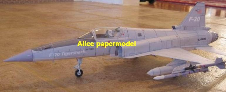 1:48 1:33 1:24 1:18 1:16 1:12 1:8 1:6 USAF US Northrop F-20 F20 Tigershark F-5 F5 F-5G F5G supersonic trainer jet fighter helicopter bomber military transport aircraft biplane big large scale size plane flight model models soldier pilot scene on sale shop store